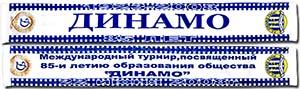 Шарф летний Динамо Тбилиси